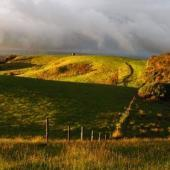 Kiwi Conservation Volunteer Project, New Zealand