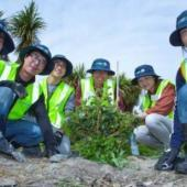 Conservation Volunteers in New Zealand