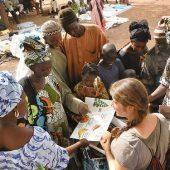 International Business Mentor Volunteers in Zimbabwe, from 2 weeks to 12 months