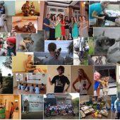 Volunteer in Central Vietnam's Animal Shelter