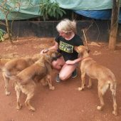 Animal Care Assistant in Jamaica