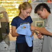 Avian Rehabilitation Internship