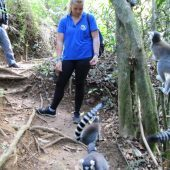 Lemur Research & Biodiversity Monitoring