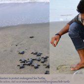 Bay of Bengal Sea Turtle Program