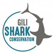 Gili Shark Conservation