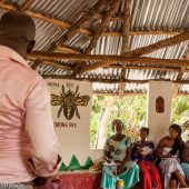 Building Livelihoods in The Gambia