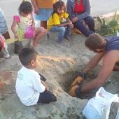 Reforestation Project Volunteer