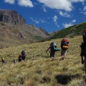 Natural History Field Course in Argentina's Backcountry