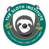 Sloth Technician with The Sloth Institute Costa Rica