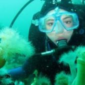 Volunteer in Australia with the Reef Conservation Program