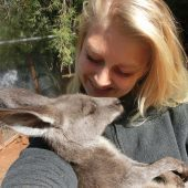 Volunteer in Australia with Wildlife Rescue Center Program