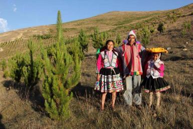 alttagVolunteer and Learn Spanish in Peru