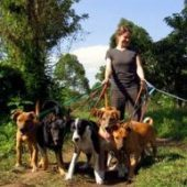 Volunteer in Tanzania with Love Volunteers Animal Welfare Program