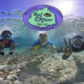 Fiji Coral Restoration Program