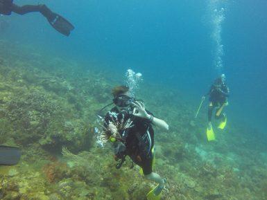 Volunteer diver Harry in Carriacou Caribbean Reef Diving | Volunteer in Carriacou | Working Abroad