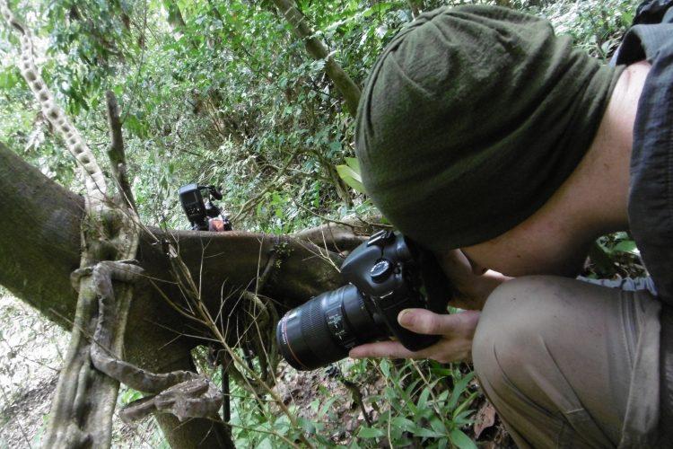 Intern photographs Amazon tree boa constrictor