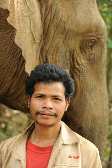 Local mahout looking after elephant