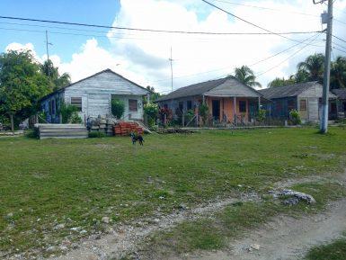 Local neighbourhood in Cocodrilo
