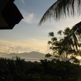 View from lodge Sulawesi