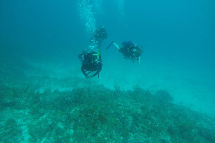 Volunteer divers in Cuba