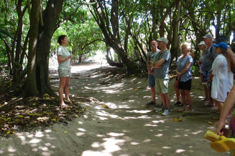Volunteer guiding tourists