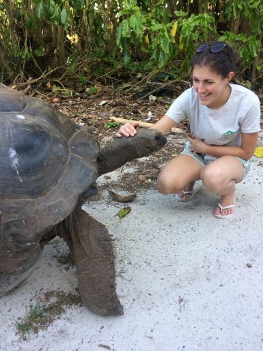 Volunteer with tortoise