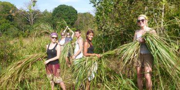 Volunteers cutting grass