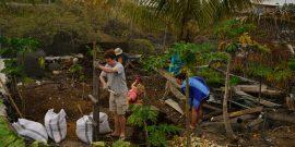 Agriculture volunteers in Galapagos