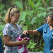Wildlife Rescue Field Research Crash Course, Costa Rica