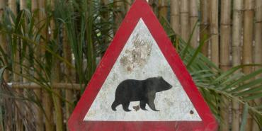Conservation Threats