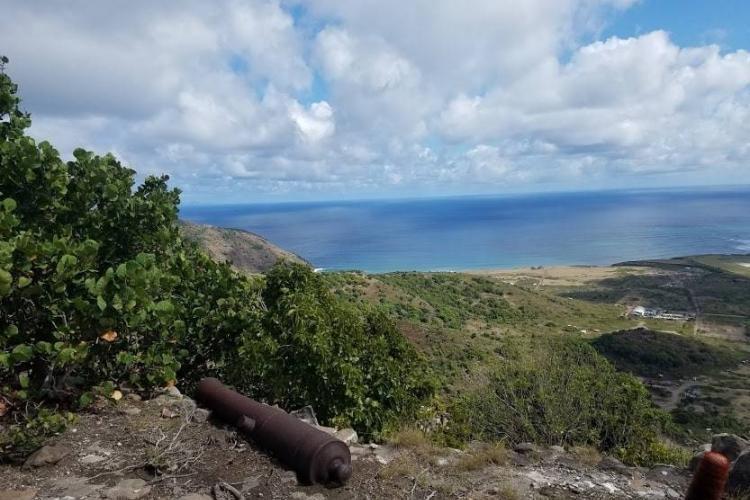 Cannon on St. Eustatius