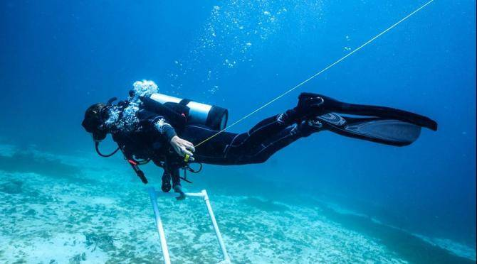 Underwater monitoring in Carriacou