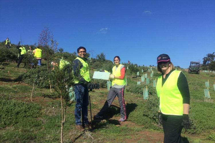 Reforestation volunteers in Australia