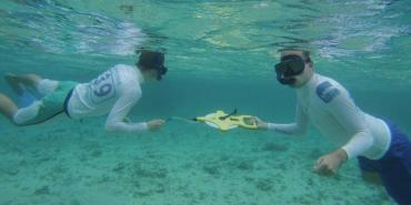 Volunteers doing coral reef transects in Mauritius