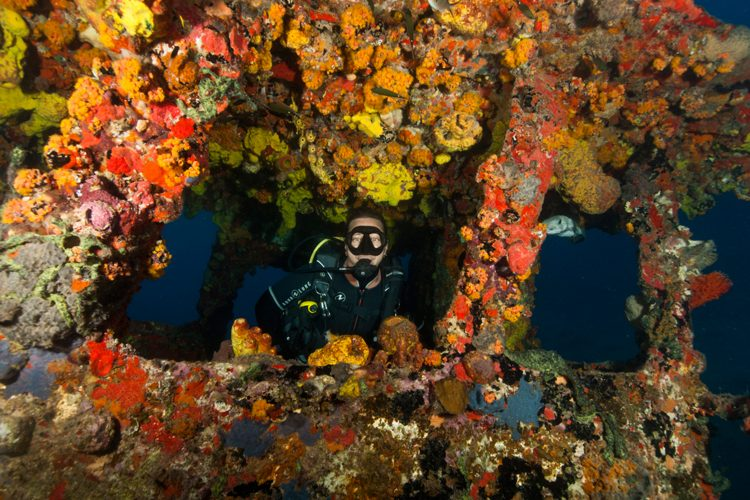 Conservation volunteer underwater in St Eustatius