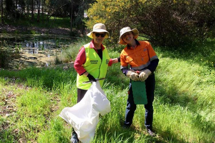 Wetlands conservation volunteers in Australia