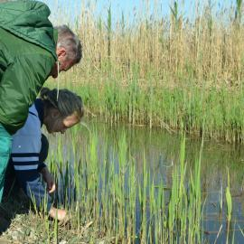 Conservation volunteers planting grass in Valencia
