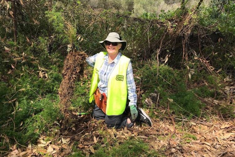 Forest management volunteer in Australia