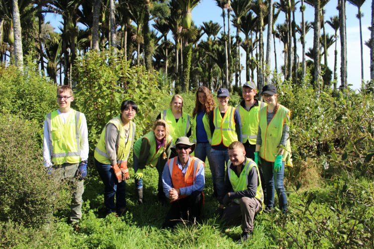 Conservation volunteers in New Zealand