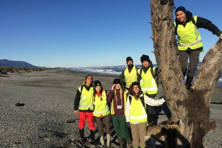 Volunteers in Punakaiki New Zealand