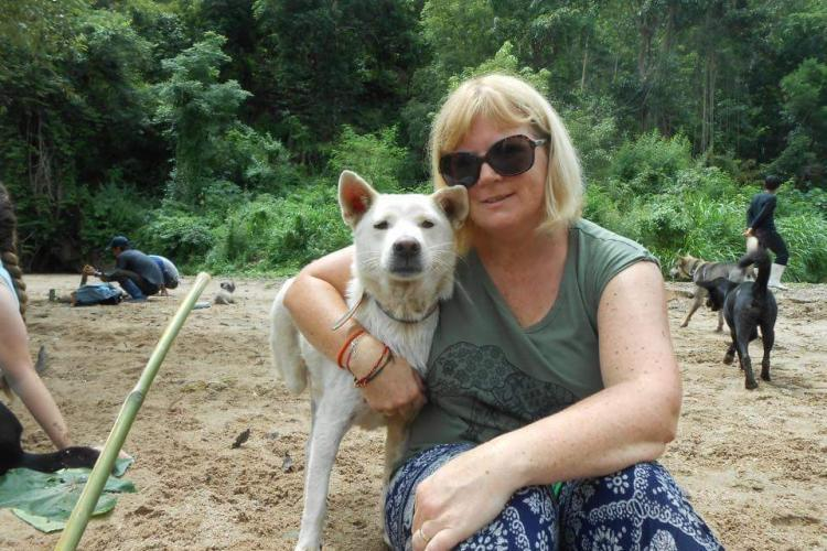 Volunteer with rescue dog Thailand