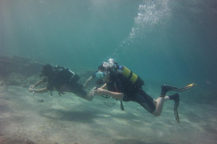 Scuba diving conservation volunteer in Spain
