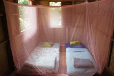 Thailand Volunteer Accommodation