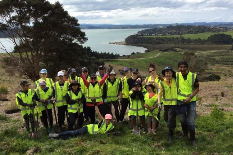 Conservation volunteer group in New Zealand