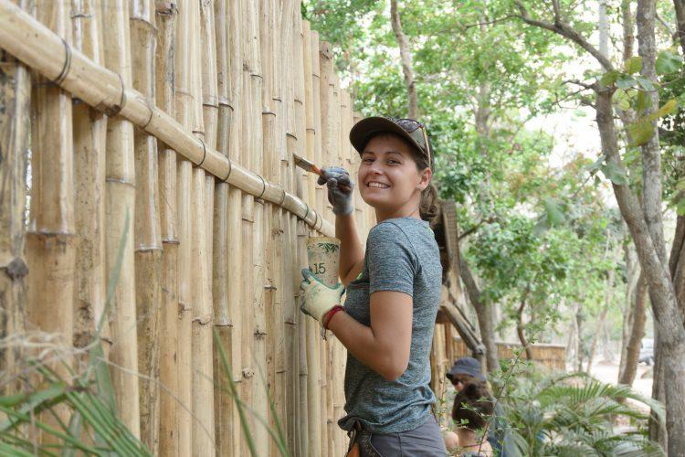 Volunteer painting fence