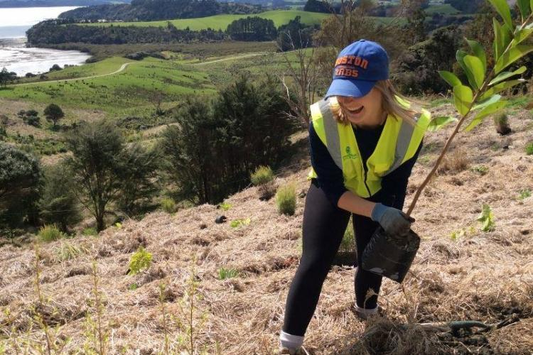 Volunteer planting a tree in New Zealand