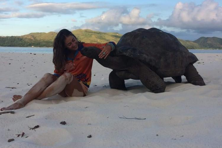 Volunteer with giant tortoise