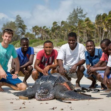 Volunteers with sea turtle on the beach