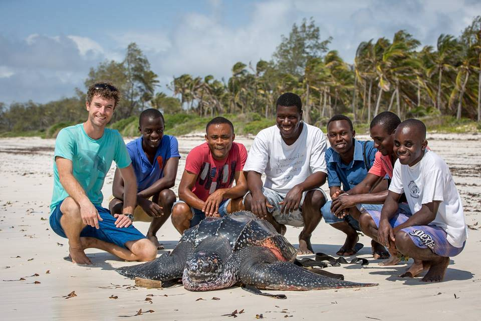 alttagWatamu Kenya | Sea Turtle Marine Volunteering | Working Abroad