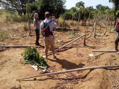 Volunteers assessing crop damage